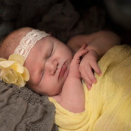 Daffodil Dreams by Trish Beukers - Babies & Children Babies ( newborn photography trish beukers )