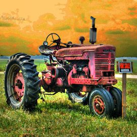 Selling the FarmAll by Julie Dant - Transportation Other ( farm machinery, farm equipment, farmall, antique tractors, tractor, antiques )