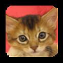 puzzle cat icon