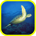 ATLAS: Sea Animals of Earth icon