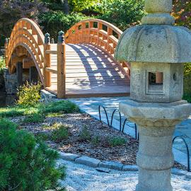 by Matt Meyers - City,  Street & Park  City Parks ( st louis, japanese gardens, bridge, garden, missouri botanical garden )