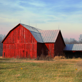 Country Barn by Marsha Biller - Buildings & Architecture Other Exteriors ( field, red, barn, scenic, evening sky, country )
