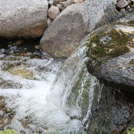 Waterfall by Chris Torrie - Nature Up Close Water ( water, waterfall, water fall )
