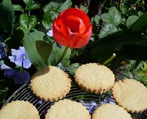 biscuits amandes tulipe