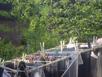 linge toit