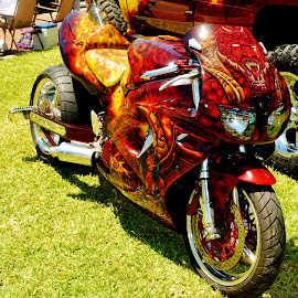 by Rhonda Rossi - Transportation Motorcycles (  )