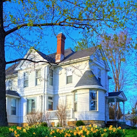 timeless perspectives by Jody Jedlicka - Buildings & Architecture Homes ( illinois, prairie foursquare, 19th century, homes, historic )