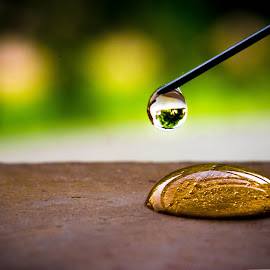 DROP BY DROP by Lovenish Bhagat - Abstract Macro ( work, water, drop, green, needle,  )
