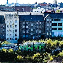 Edinburgh Canongate from Calton Hill by Lyndsay Hepburn - City,  Street & Park  Skylines ( viewsfromcaltonhilledinburgh, rearofcanongateedinburgh, edinburghskylines, edinburghcanongate, edinburgholdtenementhomes )