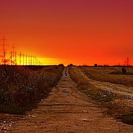 Sunset Road by Văduva Alexandru - Landscapes Deserts