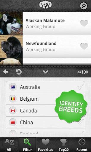 养狗指南 - Dogs PRO|玩書籍App免費|玩APPs