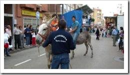 015D1CTGP1_1 burros