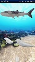 Screenshot of Dolphin Ocean 360°