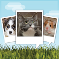Free My Talking Pet APK for Windows 8