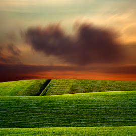 by Simone Lenzi - Landscapes Prairies, Meadows & Fields
