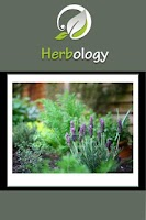 Screenshot of Herbology On The Go