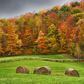 Autumn Hay Bales in Vermont by Martin Belan - Landscapes Prairies, Meadows & Fields ( vermont in the fall, fall colors, vermont fall colors, hay bales, farms, fall, autumn colors, vermont, color, colorful, nature )