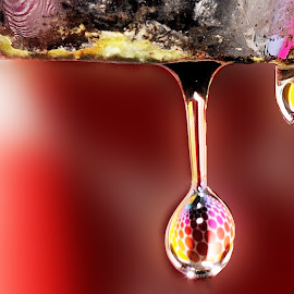 Drinking Water by Nirmal Kumar - Abstract Water Drops & Splashes ( water, kitchen, tap, drinking water )