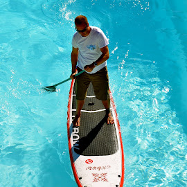 Stand Up Paddle Board by Tyrell Heaton - Sports & Fitness Other Sports ( fitness, pool, sport, board, sup )