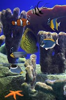 Screenshot of Pet Fish Tank