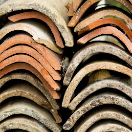 Terracotta Pantiles by John Cope - Buildings & Architecture Architectural Detail ( pantiles, tiles, terracotta )
