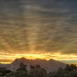 Sunrise over Pusche Ridge by Charlie Alolkoy - Landscapes Deserts ( desert, mountain, arizona, tucson, sunrise, sun )