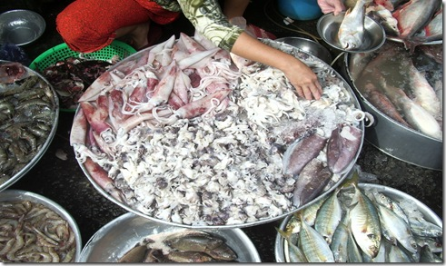 2008-10-28 Vietnam 115