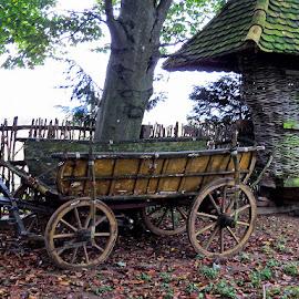 Zaprežna kola,za sve namjene, by Katica Pecigoš-Kljuković - Transportation Other ( otrovanec )