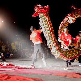 Dragon Dance by Ade Irgha - People Musicians & Entertainers ( explore bali, airimagebali.com, dragon dance, dance, cap go meh )
