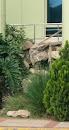 Bush Fountain