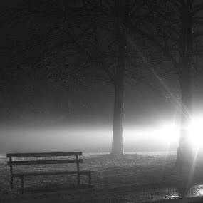Shotts by Night by Tommy  Cochrane - Landscapes Travel ( scotland, uk, park bench, shotts, light )