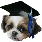 Teacher's Pet icon