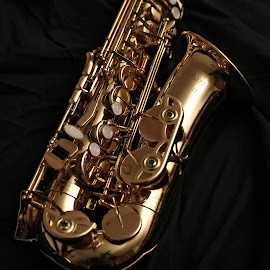 alt sax by Almas Bavcic - Artistic Objects Musical Instruments