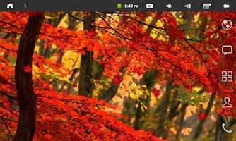 Screenshot of Galaxy S4 Leaf Live Wallpaper