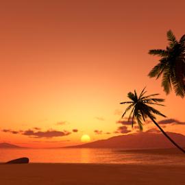 sunset palm tree by Markus Gann - Illustration Places ( shore, coconut, colorful, silhouette, tropical, ocean, travel, beach, yellow, coastline, recreation, landscape, exotic, coast, sun, island, sky, nature, tree, resort, evening, water, sand, orange, lagoon, wallpaper, beautiful, horizon, sea, seascape, paradise, dusk, holiday, palm, red, vacation, sunset, background, sundown, poster, summer, scene, view )