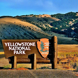 Gotta' Start Somewhere! by Tim Hall - Artistic Objects Signs ( history, early light, long shadows, yellowstone, road trip, national parks, travel, wooden sign )