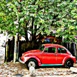 vw by Verica Pavlovic - City,  Street & Park  Neighborhoods