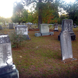 Ancient Cemetary by Terry Linton - City,  Street & Park  Cemeteries (  )