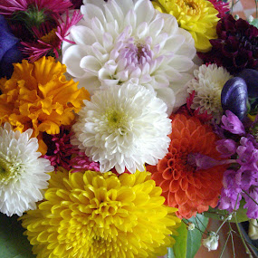 Flower Bouquet by Bozica Trnka - Flowers Flower Gardens ( bouquet, best of 2014 award, croatia, zagreb, flower, colours, Flowers, Flower Arrangements,  )