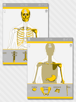 Screenshot of Enjoy Learning Anatomy puzzle