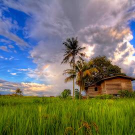 My Villages by Johan Wan - Landscapes Prairies, Meadows & Fields (  )