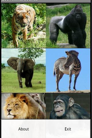 【免費娛樂App】Zoo Animal Sounds Free-APP點子
