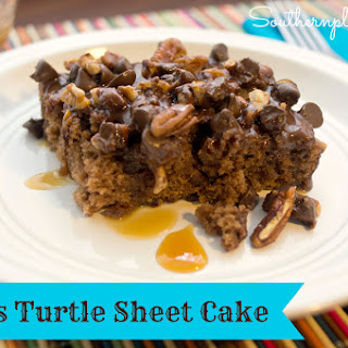 Texas Turtle Sheet Cake