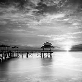 by Daniel Chang - Landscapes Waterscapes ( black and white, b&w, landscape )