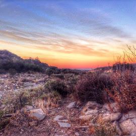 Nature Calls by Angela  H - Landscapes Deserts ( desert, nature, colorful, serenity, amateur, sunrise, tranquility )