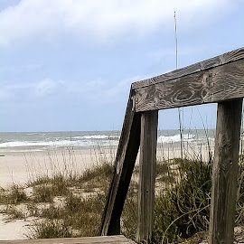 Pier by Delaney Franke - Nature Up Close Sand ( water, sand, grass, pier, beach )