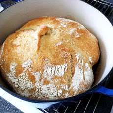 Harry's Whole Grain No Knead Dutch Oven Bread