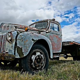 Truck in the Field by Barbara Brock - Transportation Other ( antique truck, truck in the field, old truck )