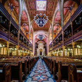 The Dohany Street Synagogue by Matthew Haines - Buildings & Architecture Places of Worship