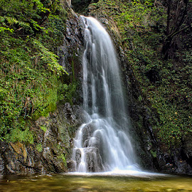 waterfall by Naiden Bochev - Nature Up Close Water ( water, nature, waterscape, waterfall, forest )